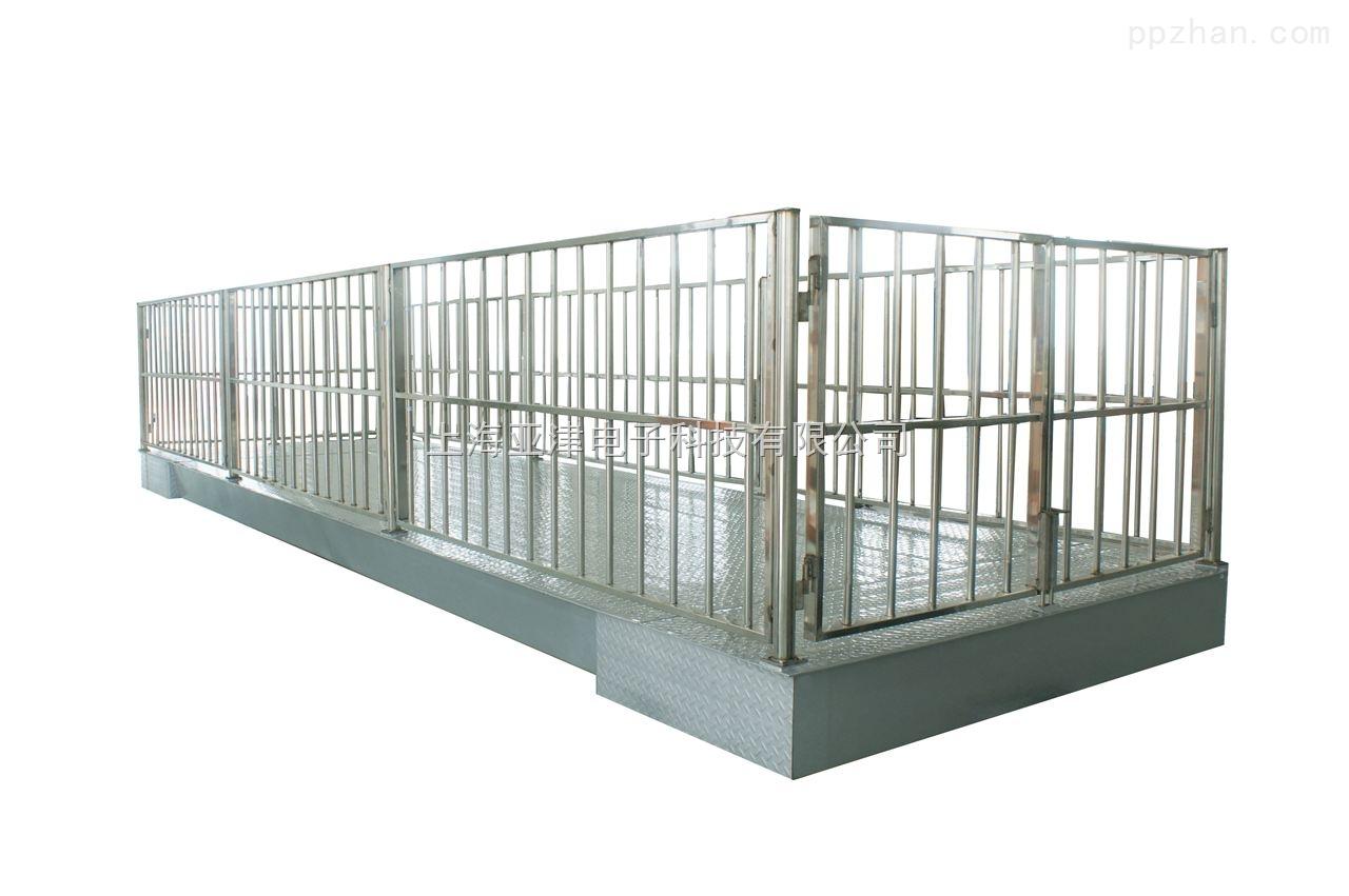 【亚津】不锈钢动物专用秤